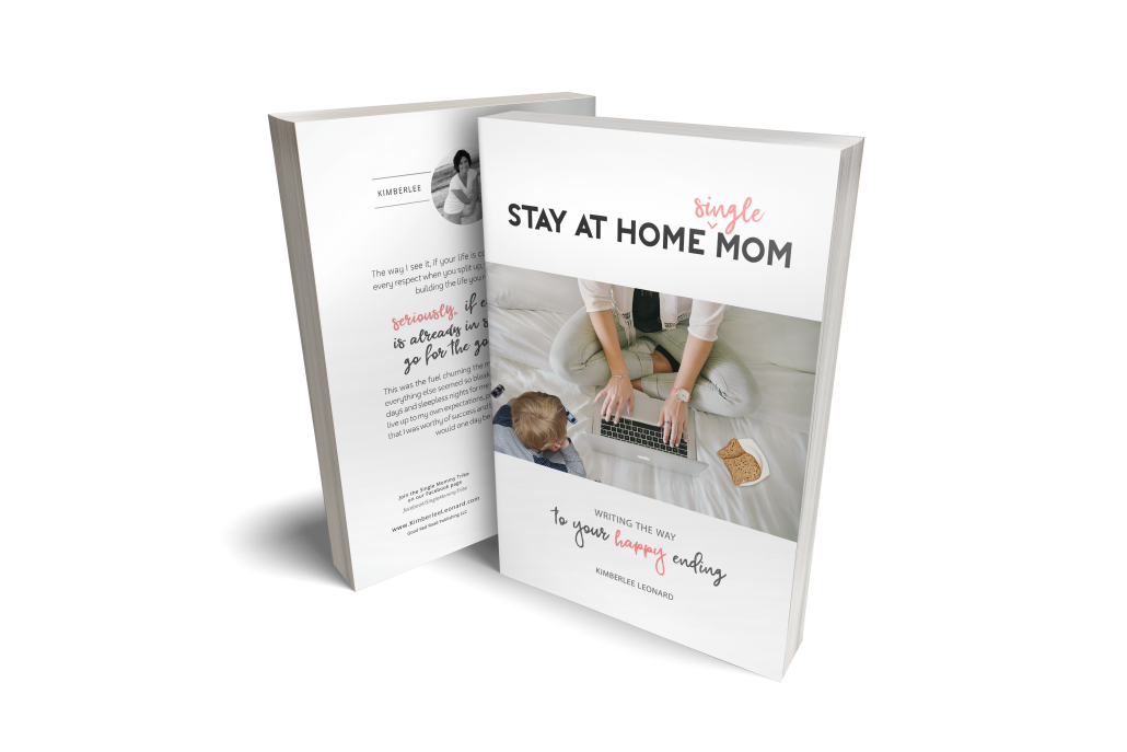 Stay At Home Single Mom Book